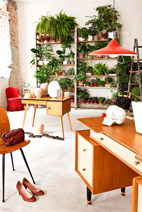 beautiful indoor garden  small apartment home