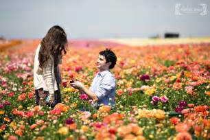 Suprise Proposal Photography Carlsbad Flower Fields