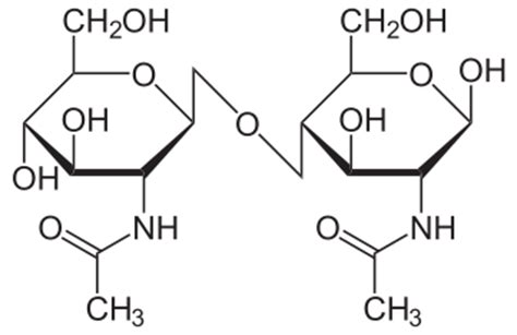 carbohydrates general structure structural biochemistry carbohydrates disaccharides