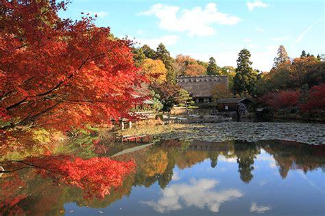 Autumn September November Event Info Nagoya Info Higashiyama Zoo And Botanical Gardens