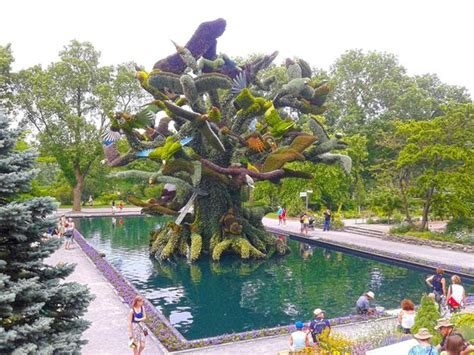 Botanical Garden Montreal Opening Hours by Live Sculptures Made Of Shrubs And Flowers Picture Of
