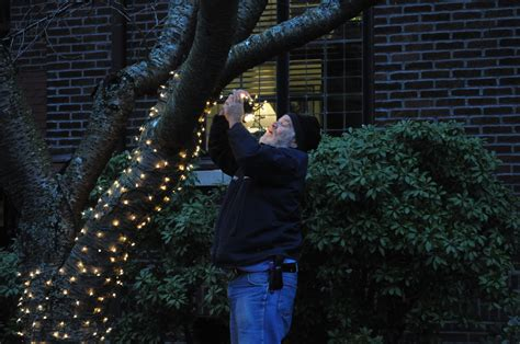file crista putting up christmas lights 01 jpg