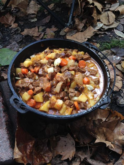 11 best images about dutch oven cooking on pinterest
