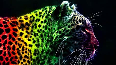 wallpapers of colorful animals tanki online musik 002 youtube