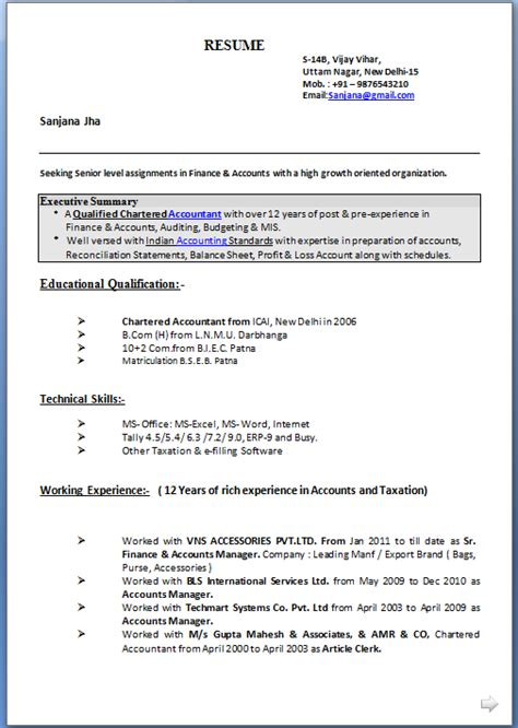 resume format for mis executive resume format