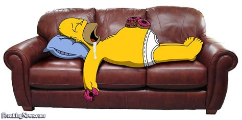 sofa funny sofa pictures freaking news