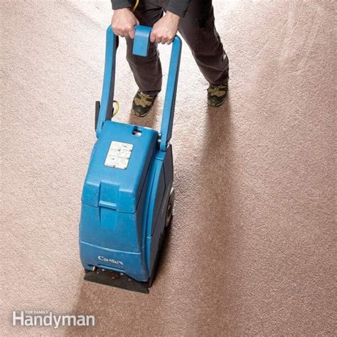 rugs that soak up water how to out basement carpeting the family handyman