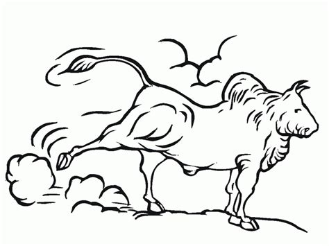 bull riding coloring pages az coloring pages
