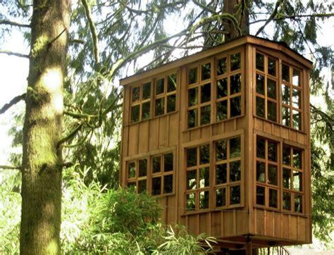 washington tree houses washington tree houses house plan 2017
