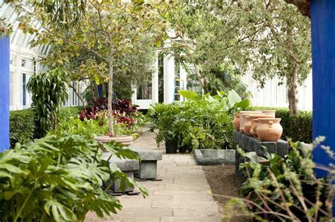 frida kahlos garden bringing frida kahlo s garden to life through bloomberg connects bloomberg philanthropies