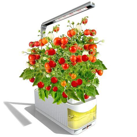 indoor hydroponic gardening tomatoes fasci garden