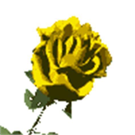 wallpaper bunga bergerak gif bunga mawar gif gambar animasi animasi bergerak 100