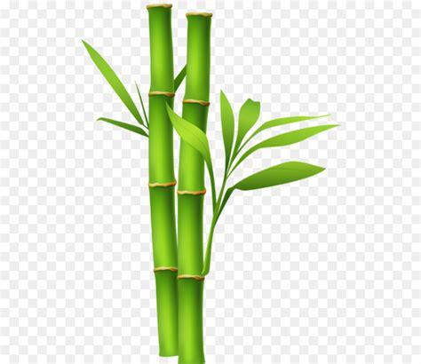 bamboo cartoon png    transparent bamboo png  cleanpng kisspng