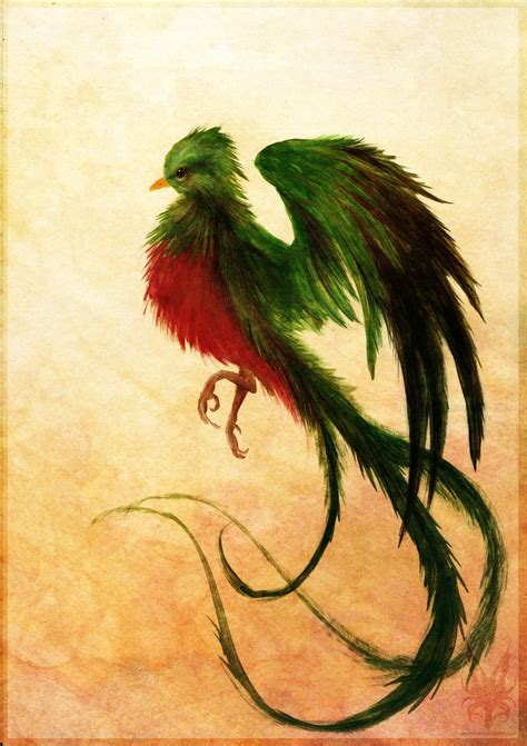 quetzal tattoo 25 best ideas about quetzal on calf
