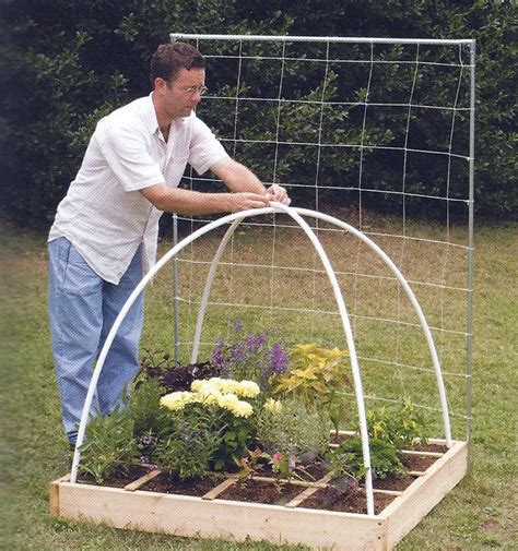 how to keep pests out of vegetable garden raised garden bed with a durable cage to keep out rats and