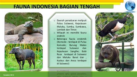 persebaran fauna  indonesia bagian barat tengah  timur