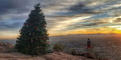 camelback mountain christmas tree earns reprieve will go