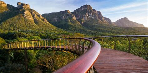 Kirstenbosch Botanical Gardens Entrance Fee Kirstenbosch Botanical Gardens Entrance Fee Visiting Kirstenbosch National Botanical Gardens