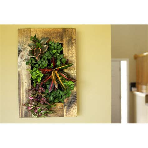 grovert living wall planter with wooden frame kit buy now