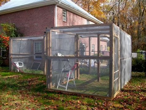 1000 ideas about cat enclosure on outdoor cat