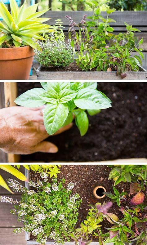 diy herb garden box diy wine box herb garden