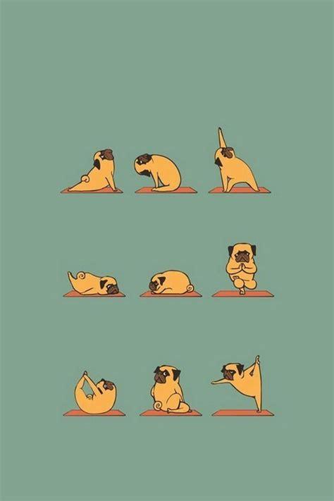 wallpaper cartoon iphone 4s funny pug doing yoga iphone 4s wallpaper iphone 4 s