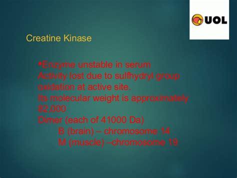 creatine kinase low important of creatine kinase enzyme