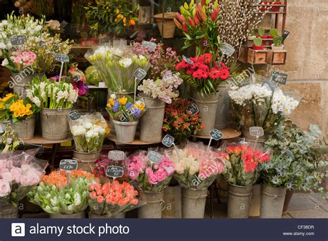 flower shop in paris paris france they display all freshly cut flowers are on display outside a flower shop