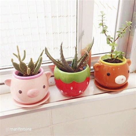 Cute Flower Pots Super Cute Flower Pots Add Colour To Your Life