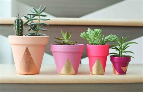 cute succulent pots planters 2017 cute pots for succulents ideas cute pots