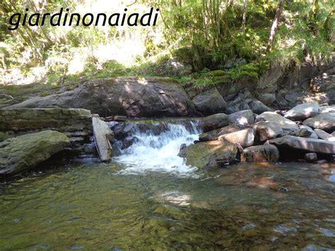 ruscello in giardino il giardino delle naiadi cascate e ruscelli