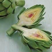 carciofo fiore fiore carciofo ortaggi fiore carciofo