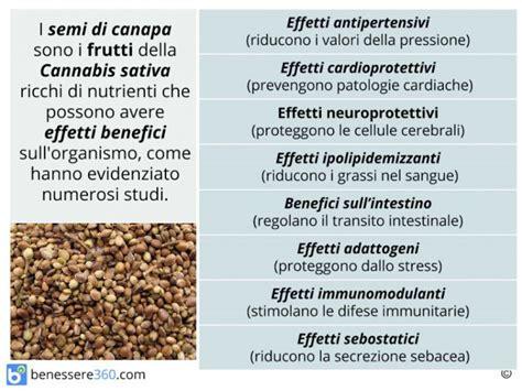 valori energetici alimenti semi di canapa propriet 224 valori nutrizionali benefici e