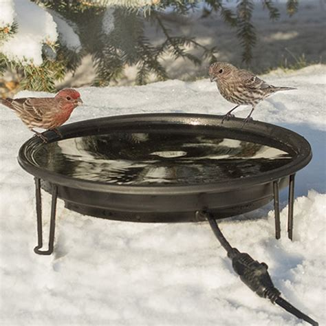 duncraft com heated bird bath ground level