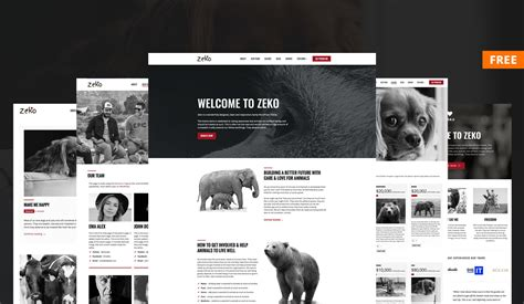 wordpress themes free non profit free non profit wordpress theme anariel design