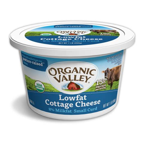Can Dogs Cottage Cheese by 10 Fresh Foods That Promote Health Cure Common Ailments