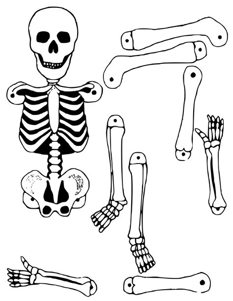 skeleton template to cut out skeleton cutout skeleton skeletons 2