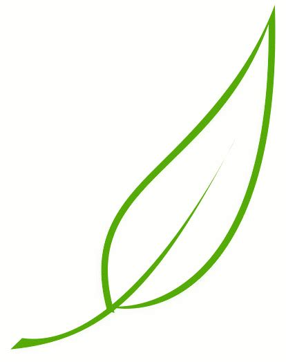 Simple Leaf Outline by Simple Leaf Outline Clipart Clipart Suggest