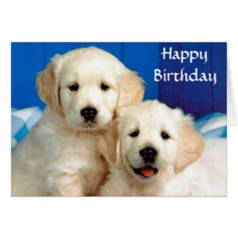golden retriever birthday card golden retriever puppy greeting cards zazzle