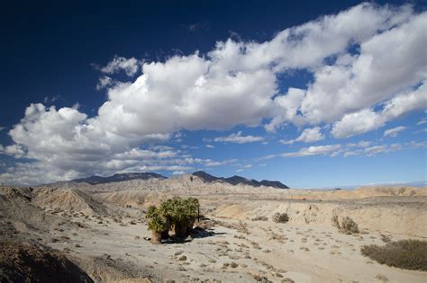 where is anza borrego anza borrego desert state park state provincial park in