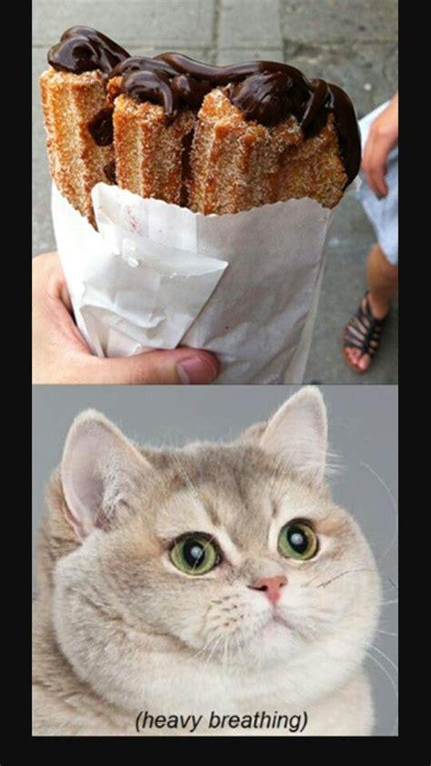 Breathing Heavily Cat Meme - heavy breathing heavy breathing pinterest