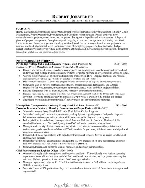 Technical Program Manager Resume by It Manager Resume Summary Frieze Resume Ideas