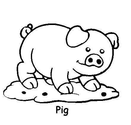 coloring pages of sw animals kids coloring pages cute animal coloring pages my