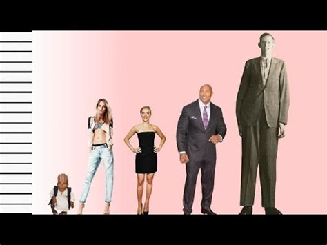 hollywood celebrities real height how tall is cara delevingne celebrity height comparison