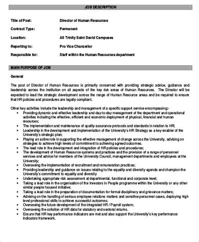 director description 9 human resources director description sles