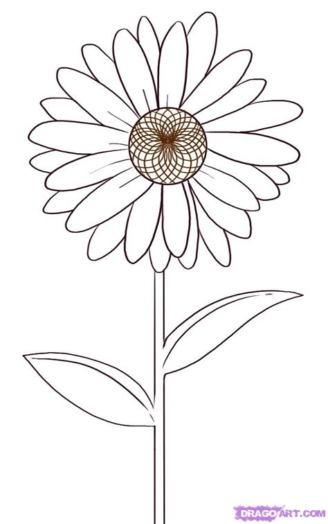 Drawing Flowers by How To Draw A Step By Step Flowers Pop Culture