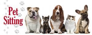 Pet Sitters Pet Watchers Northwest Walking And Pet Sitting