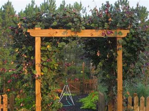 build an arbor trellis woodwork how to build a natural wood arbor pdf plans