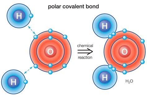 what is a polar bond definition and exles