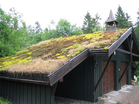mail2day go green traditional grass roofs of norway 21 pics